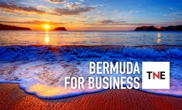 The New Economy interviews Cheryl Packwood, CEO of Business Bermuda, on the advantages of investing in Bermuda