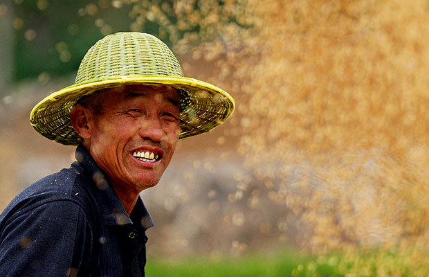 chinese farmers - photo #27