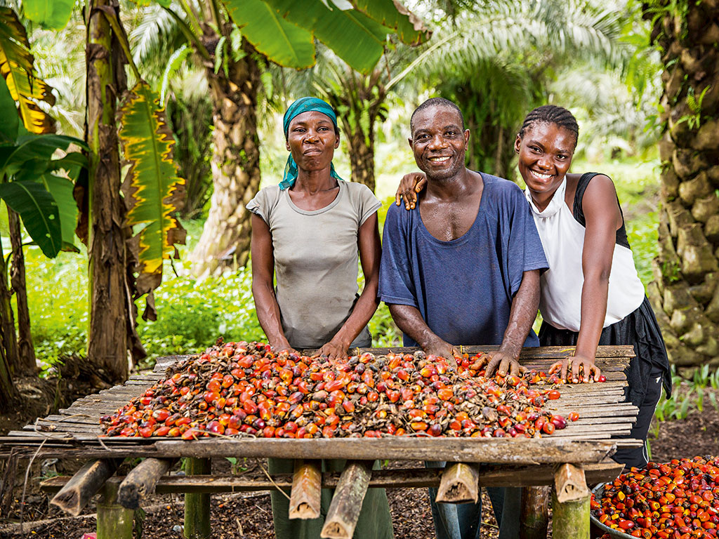 the economy of ghana Overview of the current economy in the early 1990s, ghana's economic recovery still appeared uneven and was geared primarily to the export rather than domestic.