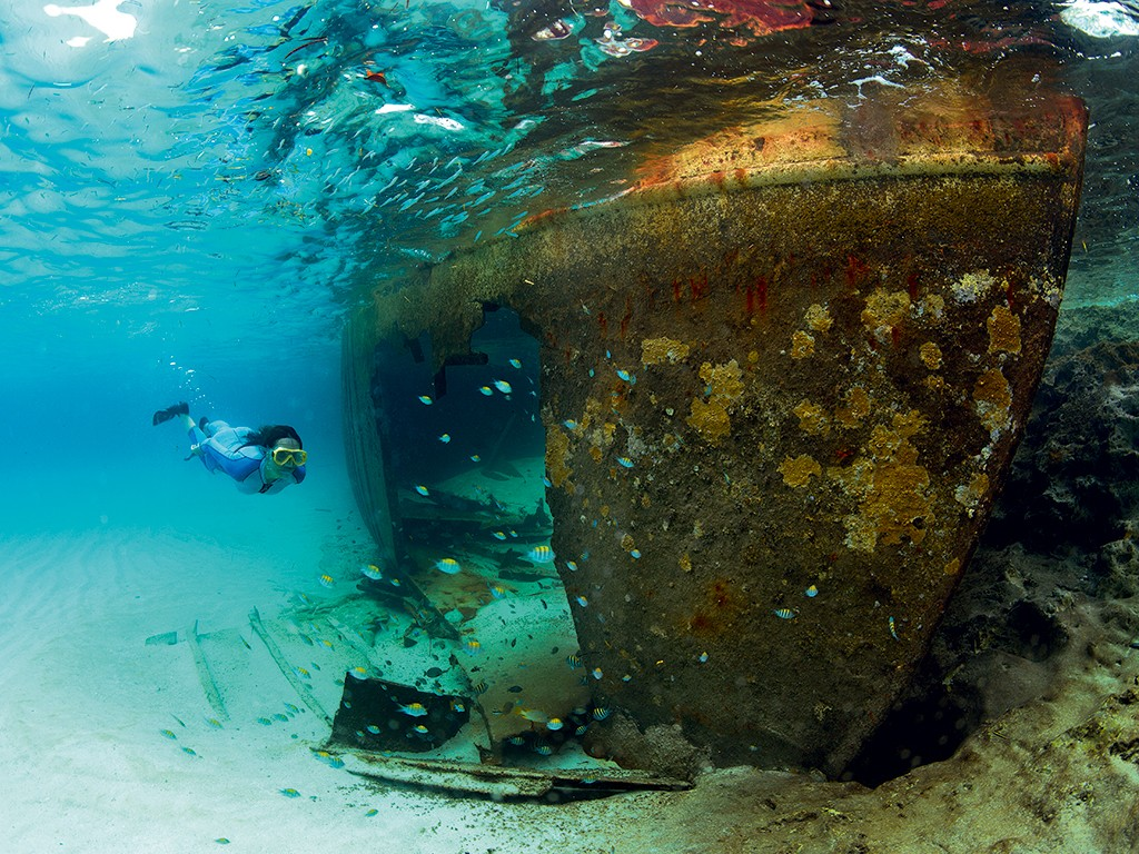 Artificial reefs are a way of protecting nature that can, if not planned carefully, damage it. They are a crude unbalancing of marine biology that attracts thousands of tourists. They are, in short, a bit controversial