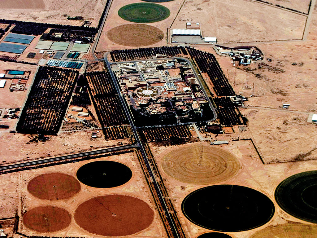 Arabian Frights The Saudi Struggle With Oil Prices The