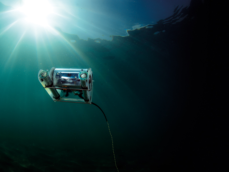 Deep-sea mining could help meet mankind's insatiable thirst for essential minerals and power the green economy of the future. It could also cause irreversible damage to a part of the planet that we know very little about