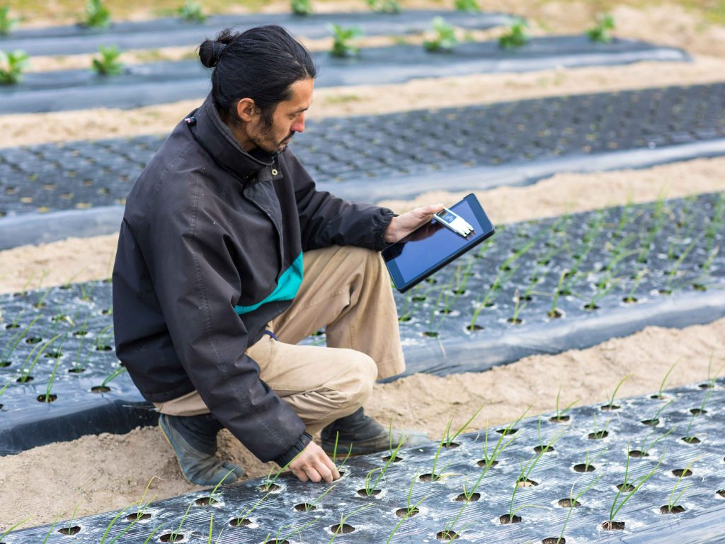 Today's food and agriculture companies are striving to feed a growing population in a world under increasing under threat from climate change. Innovation in how we produce food could be the answer