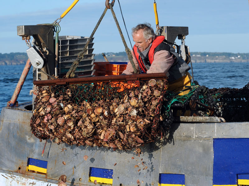 IBM Food Trust, along with Massachusetts firm Raw Seafoods, is using blockchain technology to digitalise the supply chain and improve the traceability of scallops